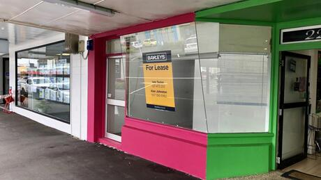 221 Devon Street East, New Plymouth Central