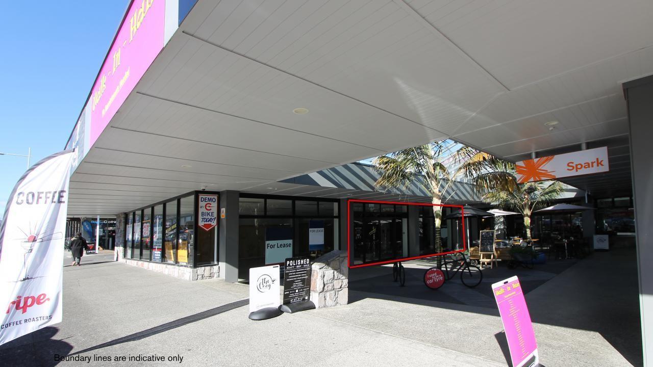 22, 19 Tamamutu Street, Taupo
