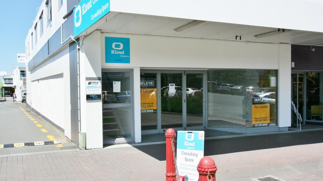 43 Horomatangi Street, Taupo