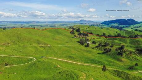 2261 Te Kopia Road, Taupo Surrounds