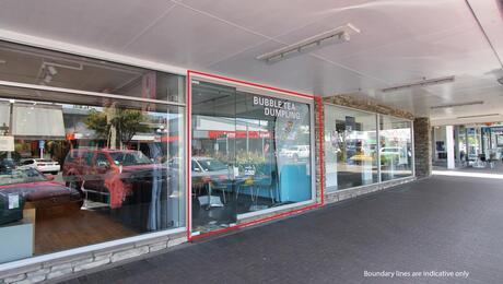 20 Horomatangi Street, Taupo