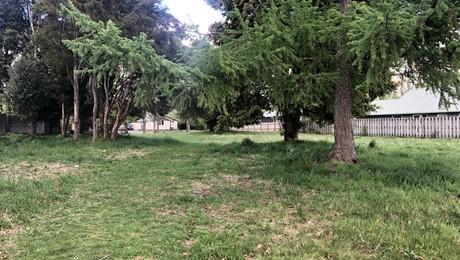 39 Te Iwiheke Place, Turangi
