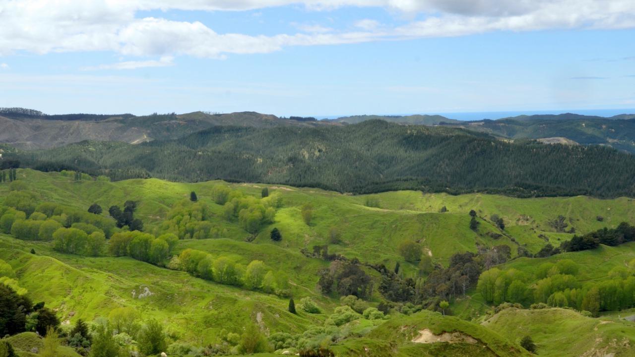 4364 State Highway 2 (Kokoru), Wairoa Country