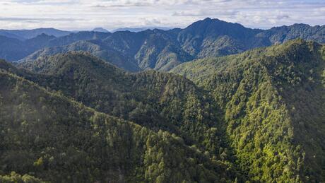 Takaputahi Road, Toatoa, Opotiki Surrounds