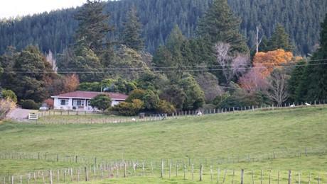 205 Rukumoana Road, Te Pohue