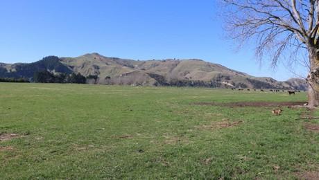 Lower Flag Range Road, Sherenden