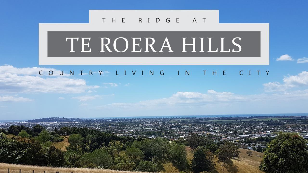 8 Te Roera Drive, Taradale