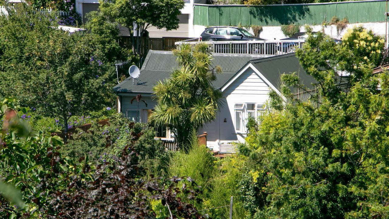 520 Shakespeare Terrace, Bluff Hill