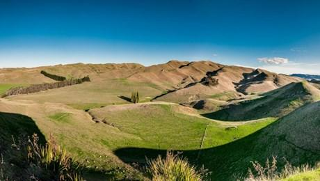 589  Middle Road, Hilton Station, Havelock North
