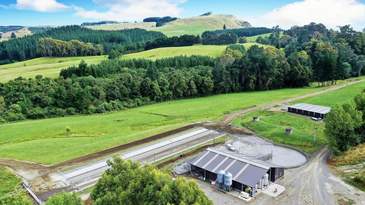 3629 Puketitiri Road, Patoka