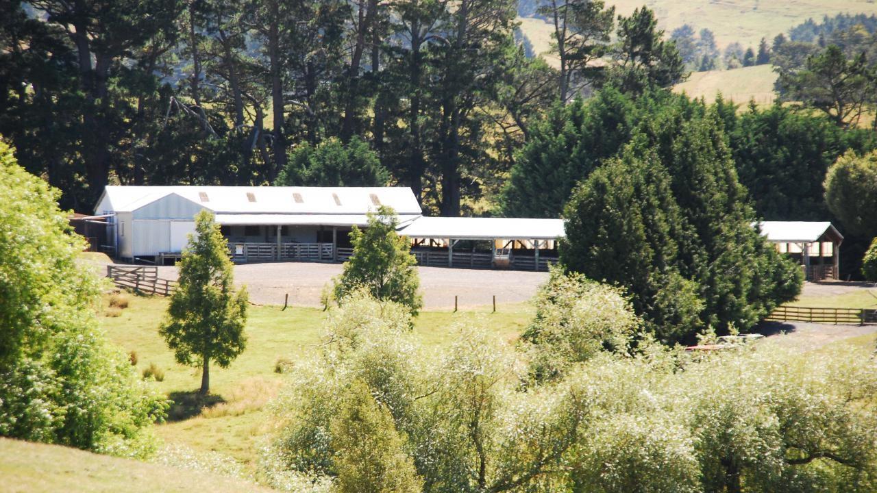 278 Hinerua Road, Ongaonga