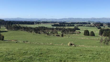 1740 Top Grass Road, Dannevirke