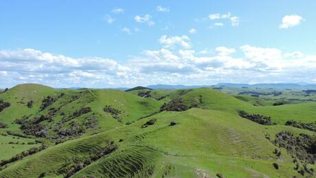 694 Farm Road, Waipukurau