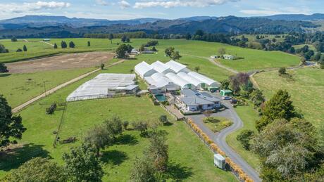 163 Waitea Branch Road, Kakahi