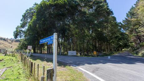 Mangawhio Road, Waverley