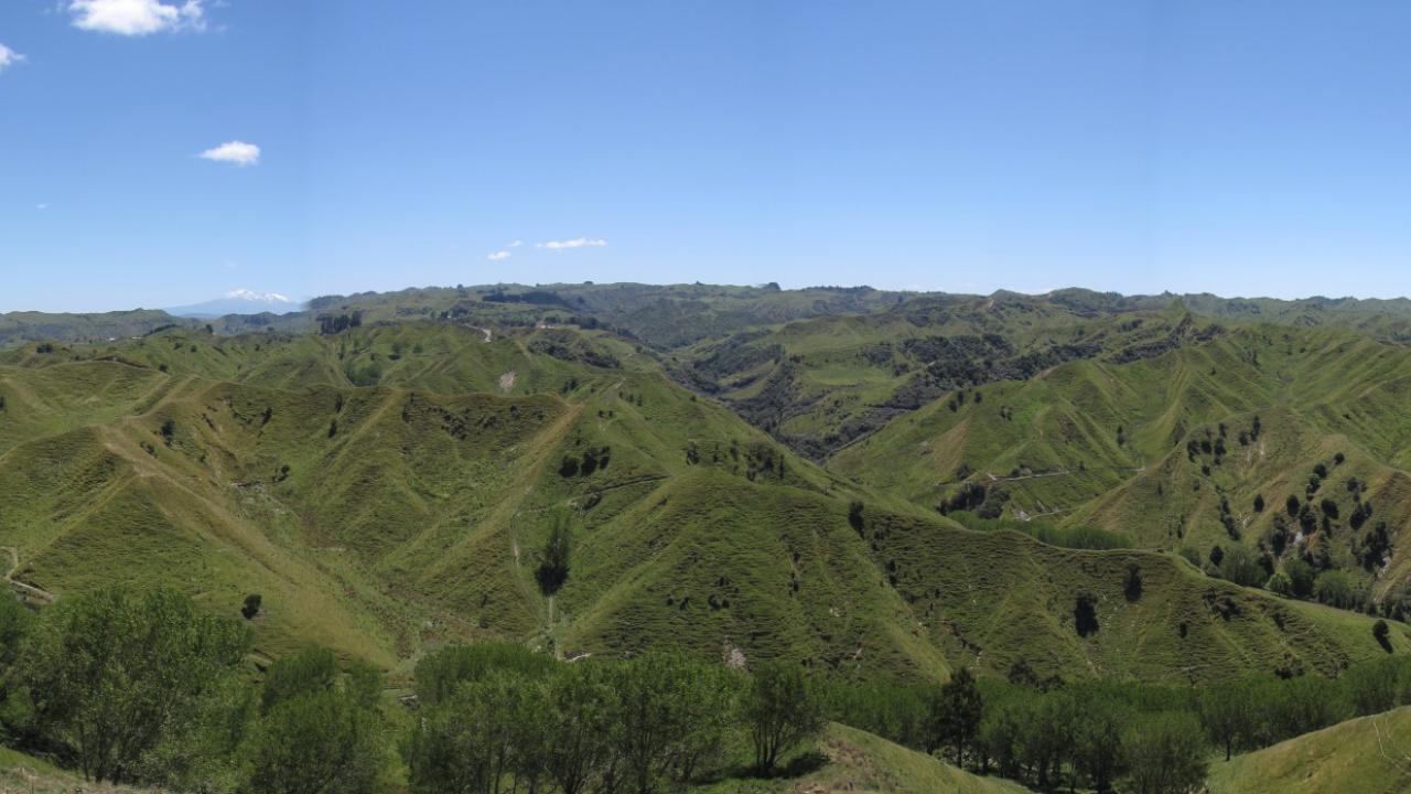 Additional photo for property listing at 383 Hectares Clean Hill Country Nuova Zelanda