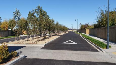 The Avenue, South Belt, Masterton