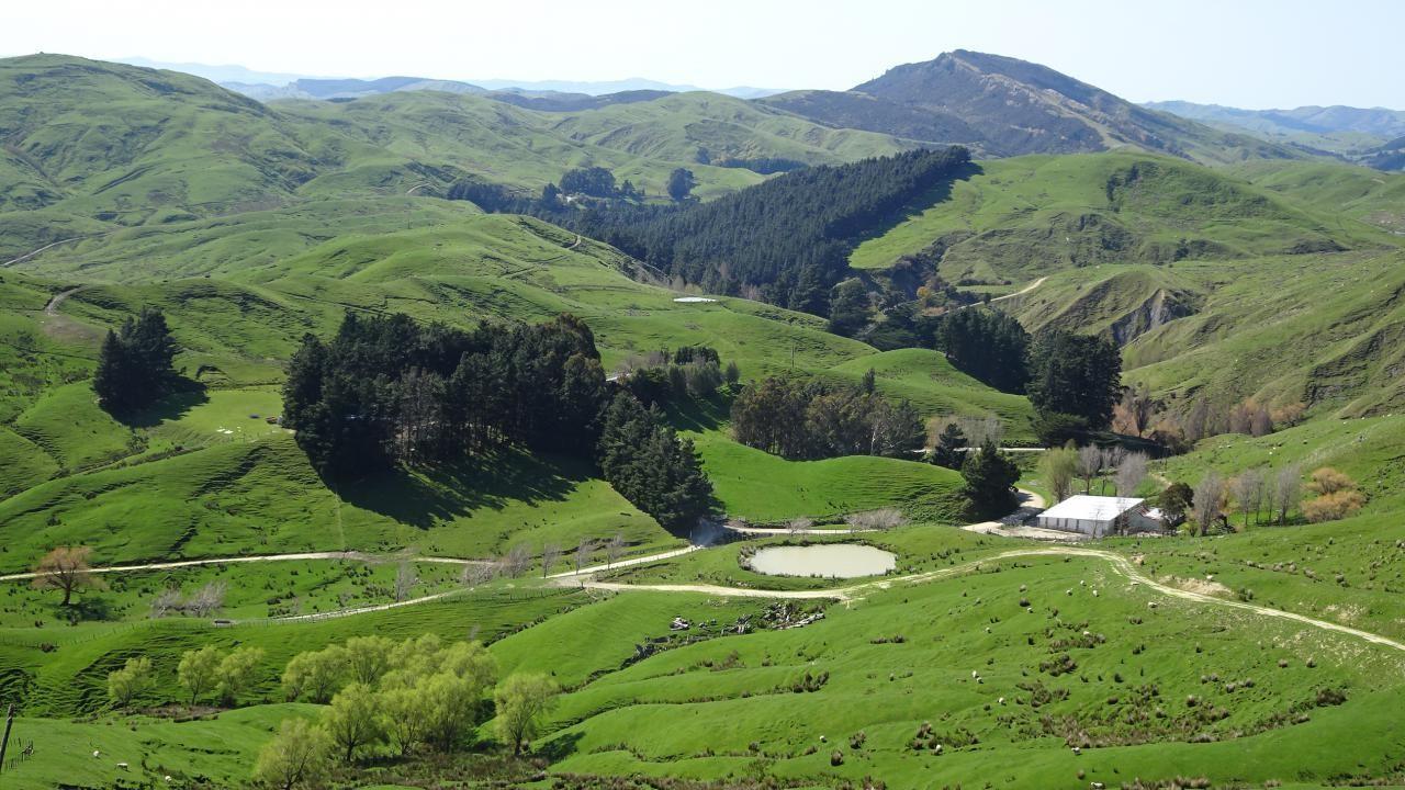 121 Huia Road, Pongaroa