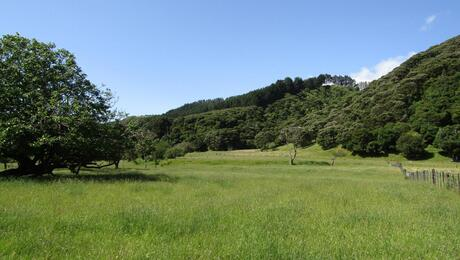 635 Whakatomotomo Road, Pirinoa, South Wairarapa Surrounds