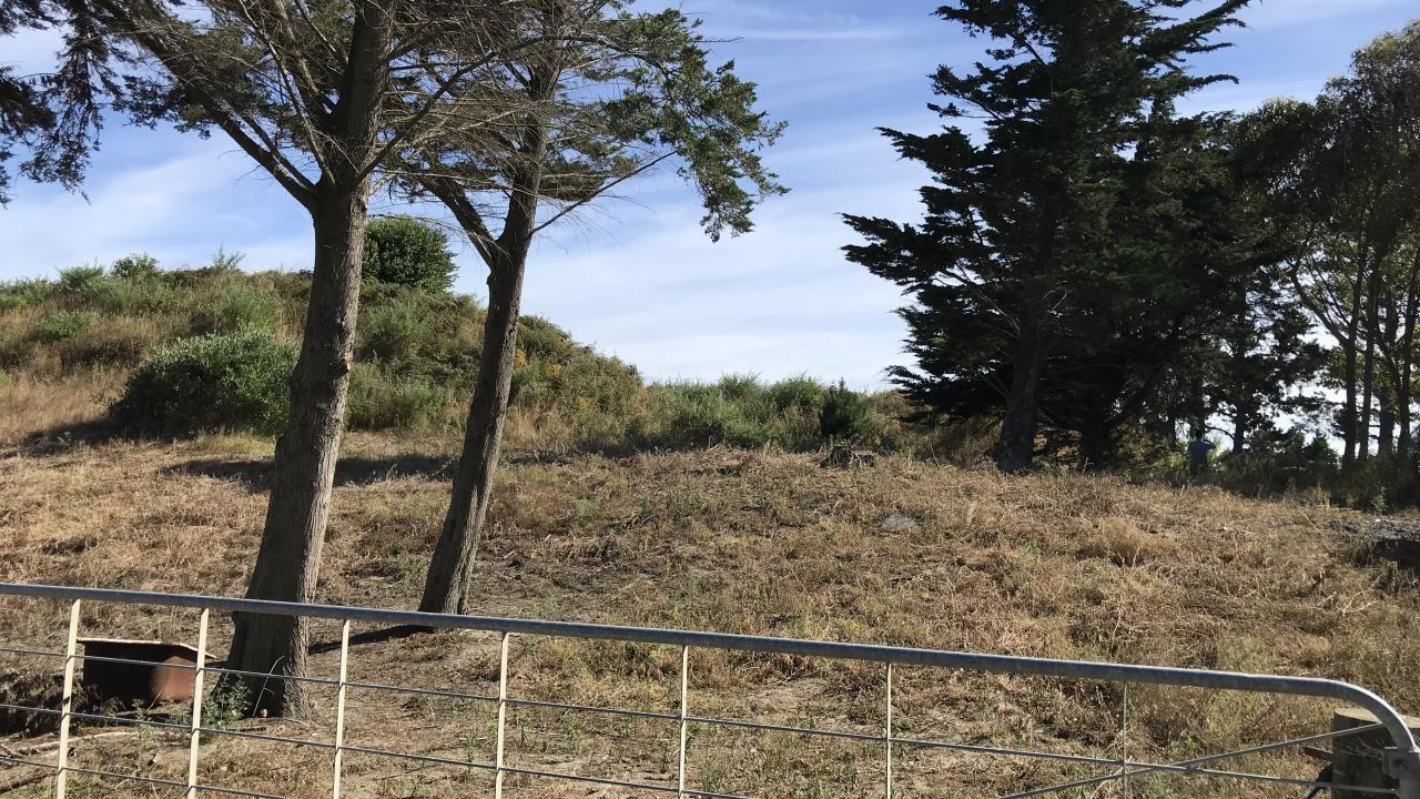 Lot 3 - 24 Forest Road, Waitarere Beach