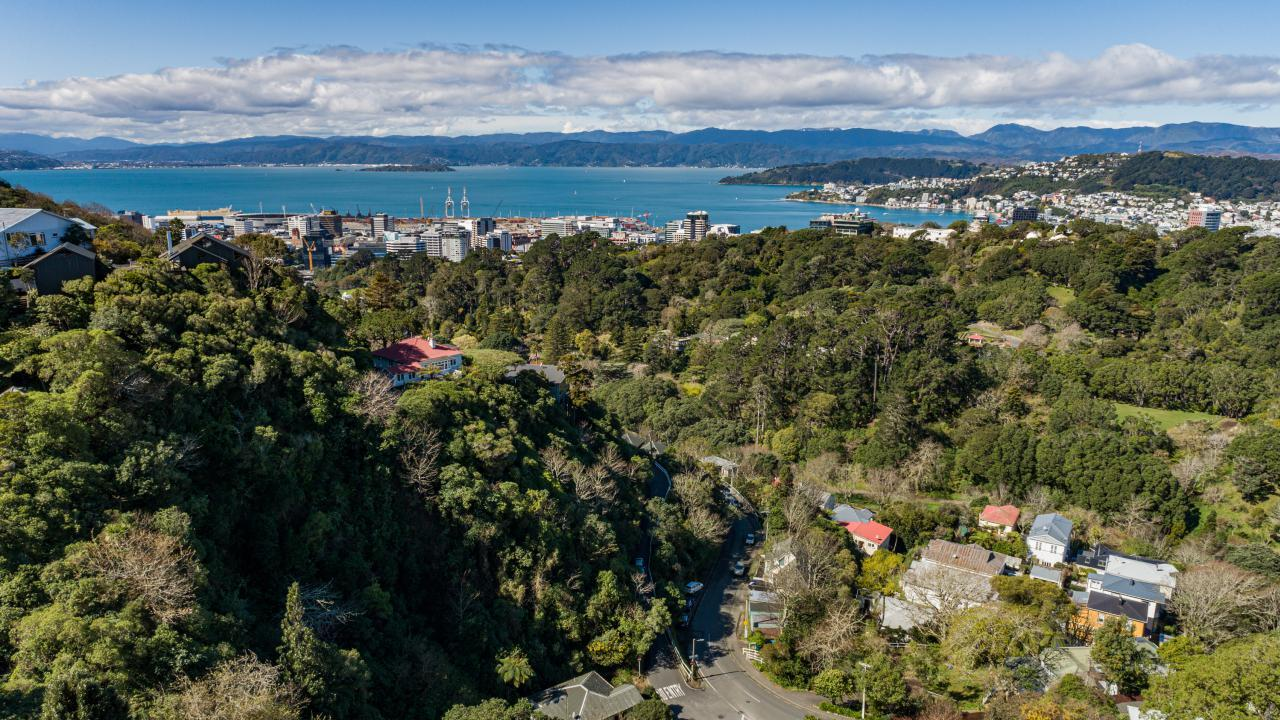 39 Harbour View Road, Northland