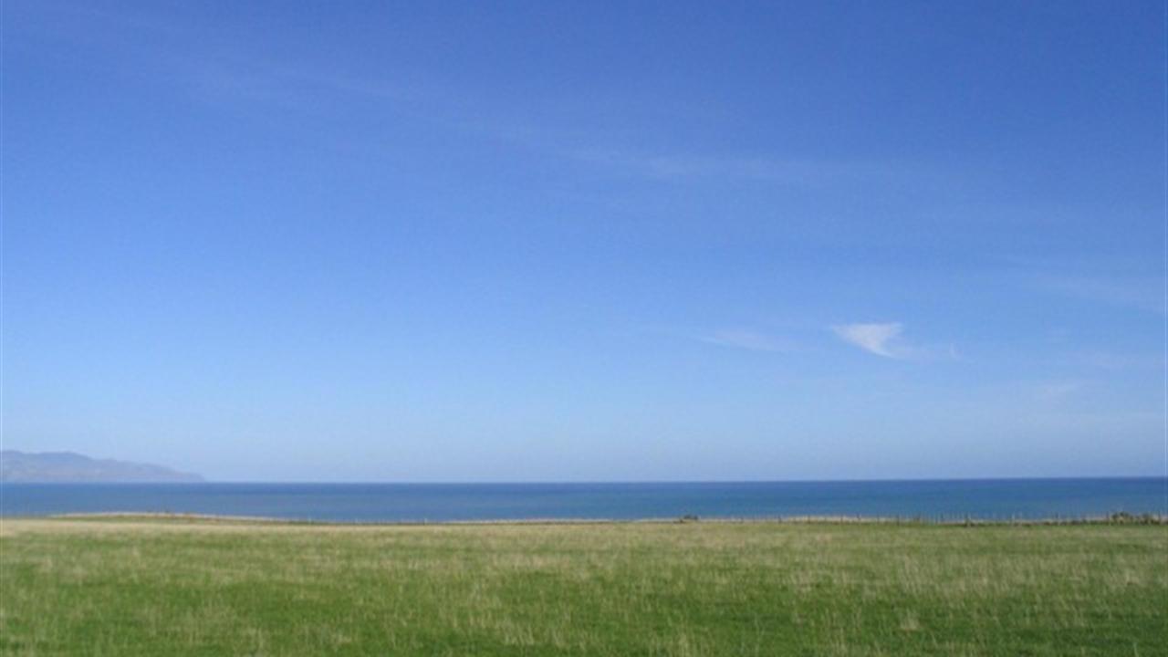 South Wairarapa Surrounds