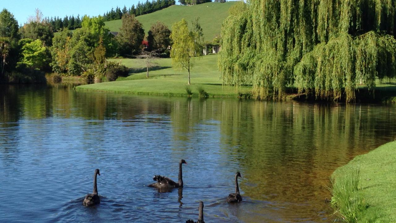 Farm / Ranch / Plantation for Sale at Paratiho - 'A Magnificent Slice of Paradise' New Zealand