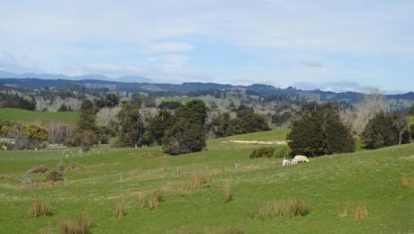 146 Old House Road, Upper Moutere