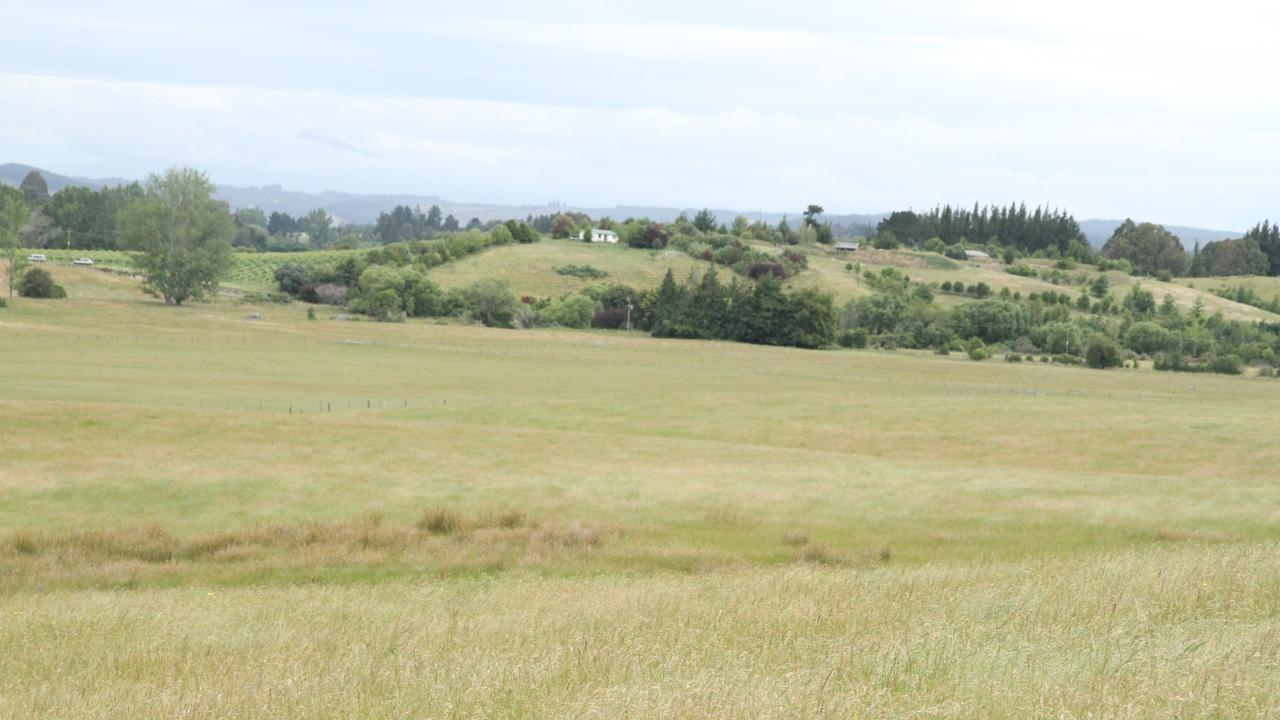 146A Old House Road, Upper Moutere