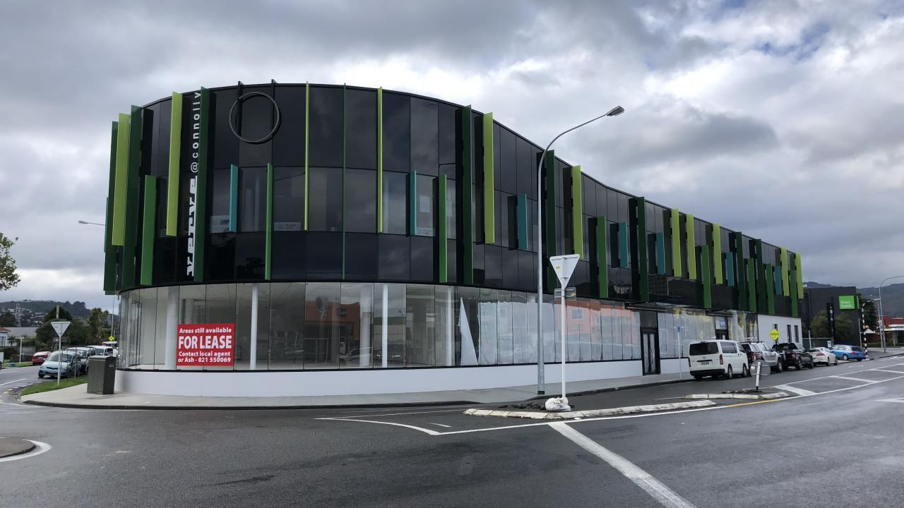 Unit 2 and 3/2 Connolly Street, Lower Hutt