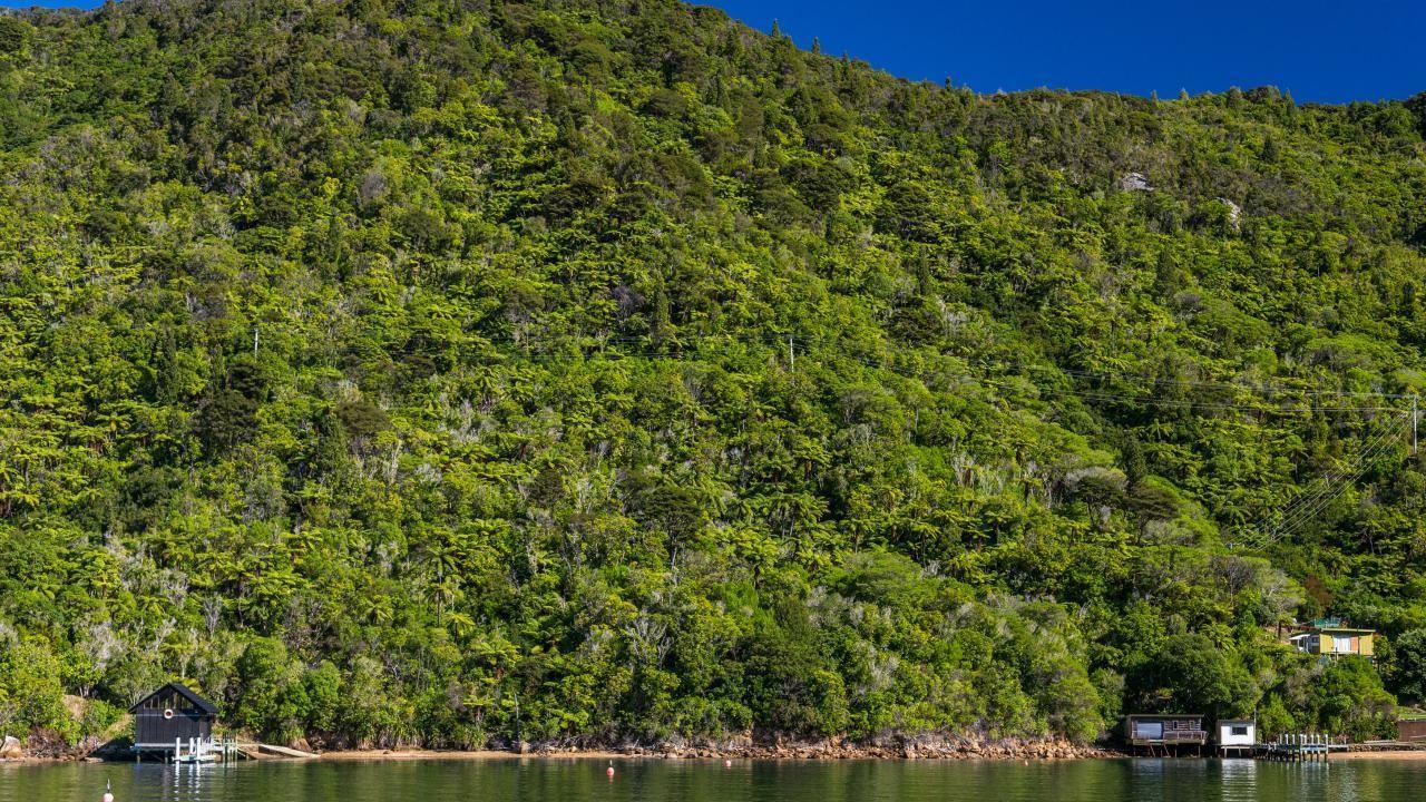 0 Blackwood Bay, Queen Charlotte Sound