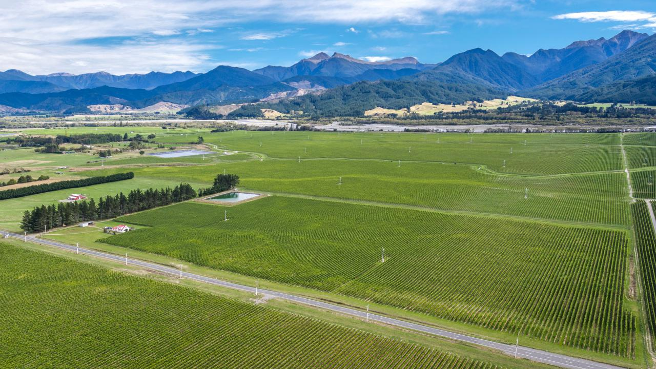Nông trại / Trang trại / Vườn vì Bán tại Vineyard Investment in the Valley Marlborough Sounds, New Zealand