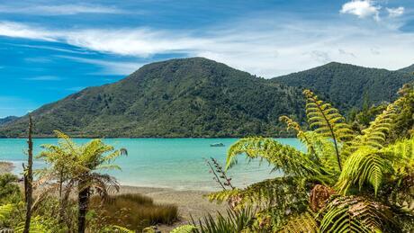 1 Nydia Bay, Pelorus Sounds