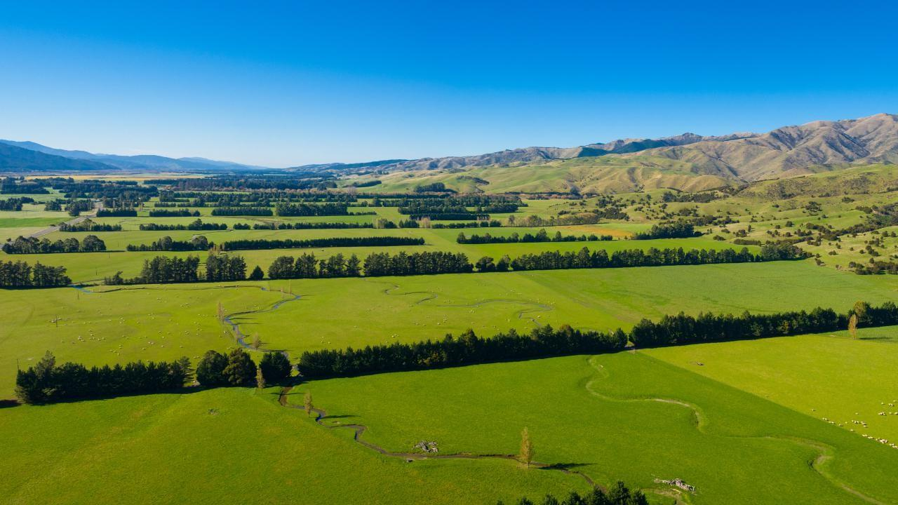 4675 State Highway 63, Wairau Valley