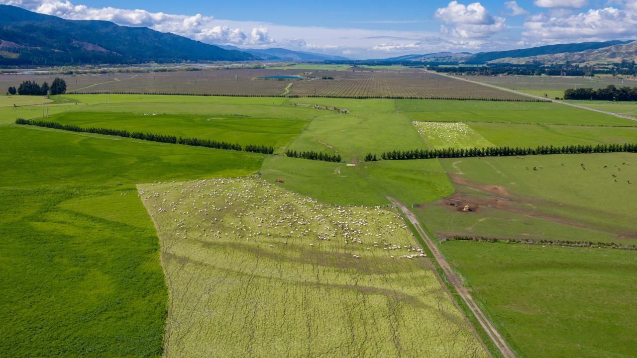 4518 State Highway 63, Wairau Valley