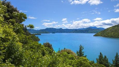 438 Port Underwood Road, Whatamango Bay