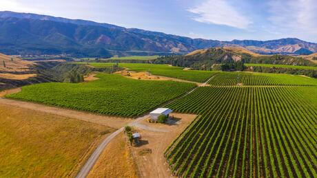 220 Ballochdale Road, Awatere Valley