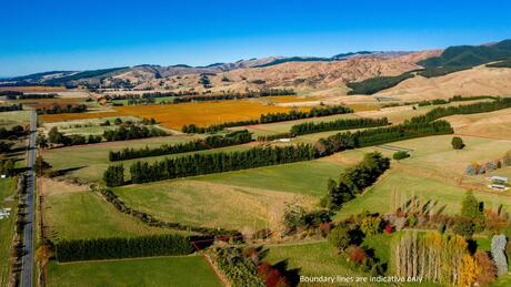3397 State Highway 63, Wairau Valley