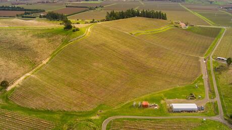 Outpost Vineyard, Hawkesbury