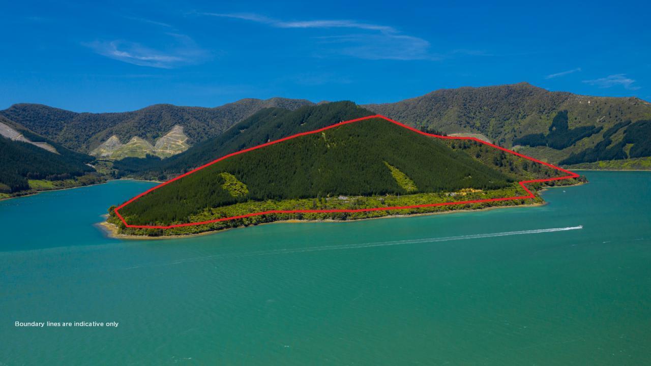 Nikau Bay, Pelorus Sounds