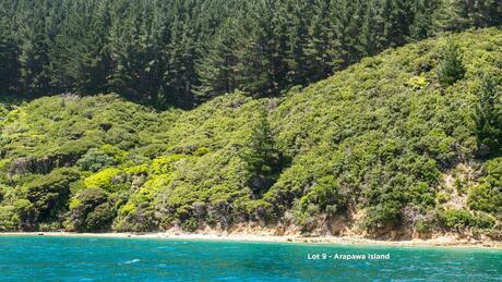 * Fitzgerald Bay Sections, Arapawa Island