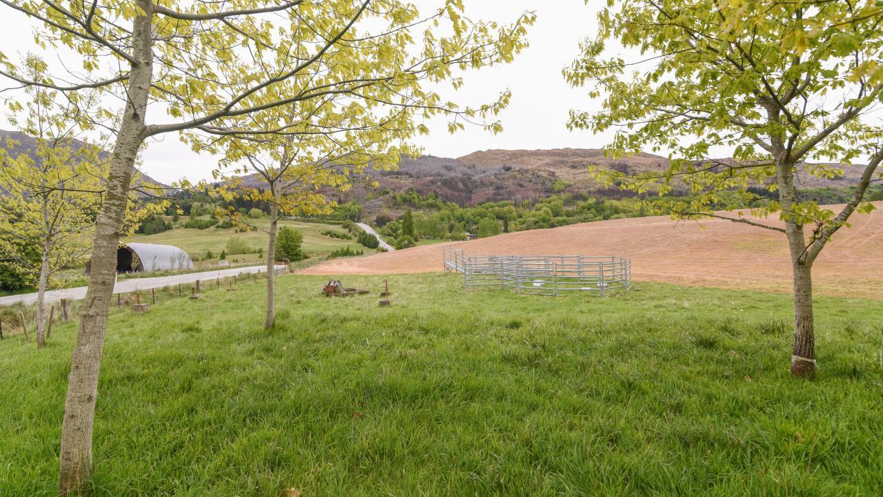Littles Road, Dalefield