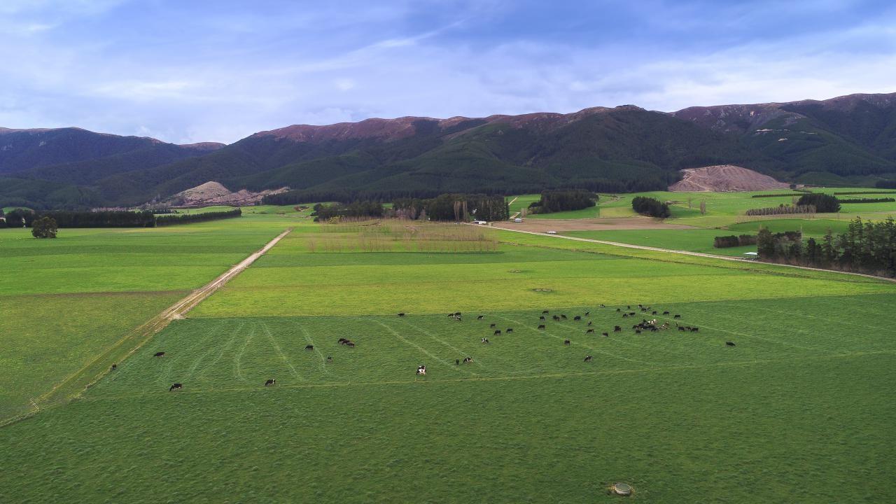 Tapanui Raes Junction Highway, West Otago
