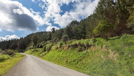 650 Tangahoe Valley Road, Hawera