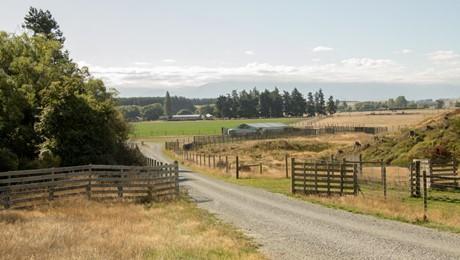 207 Tondros Road, Fairlie