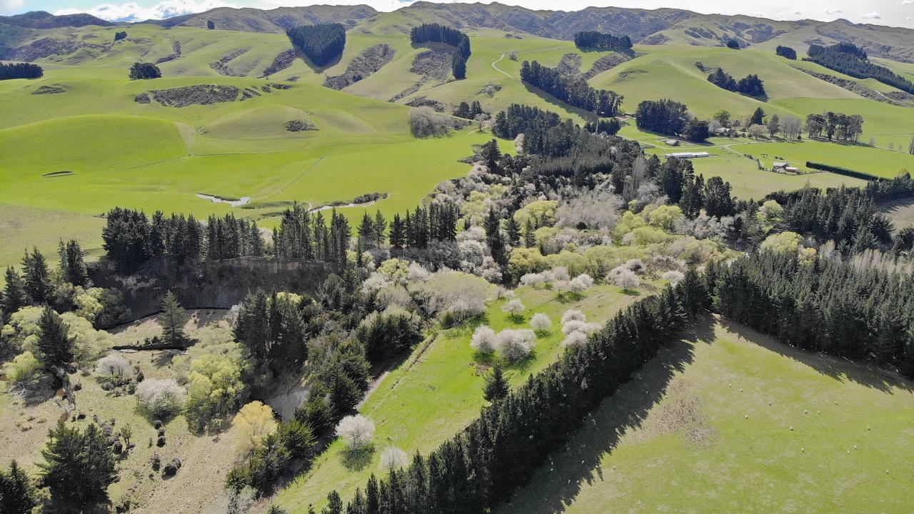 Greta Road, Greta Valley