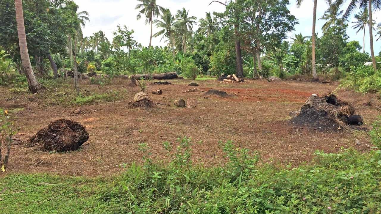 Naikovuna, Nukubalavu Road