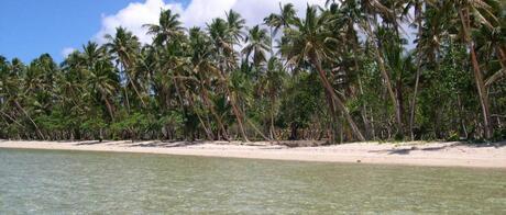 Savusavu, Vanua Levu