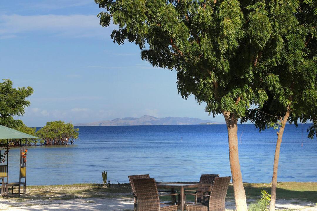 Vuda, Viti Levu, Fiji.