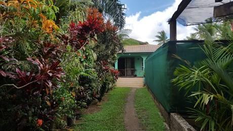 Koronivia, Suva
